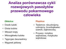 pasożyty2 - http://porady.uzdrawianie.org