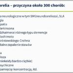 Anna Tabor – diagnostyka, patogeny, borelia, metale