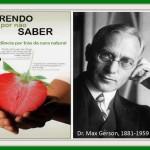 Terapia Gersona – elementy
